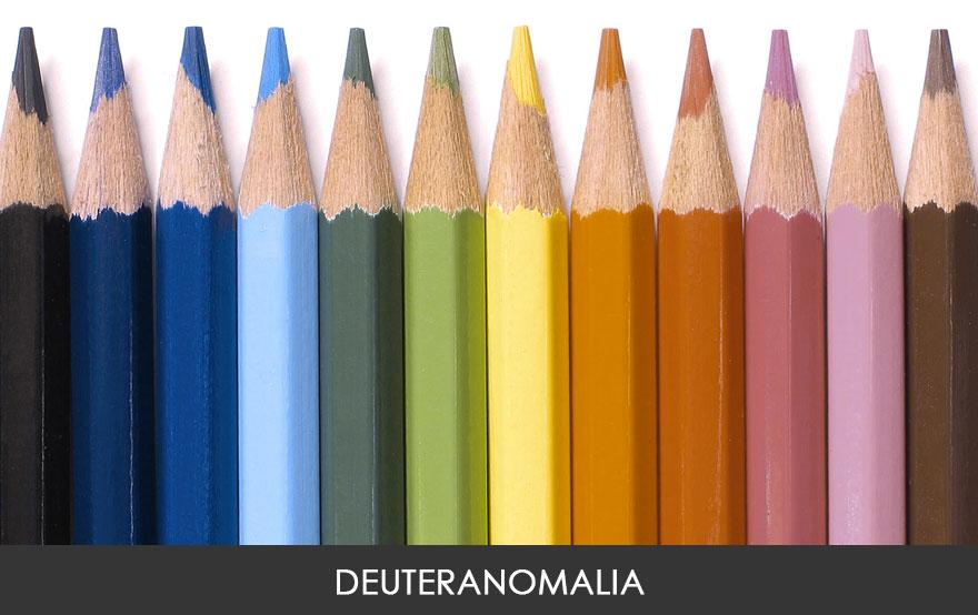 Vision de los colores segun los distintos tipos de daltonismo