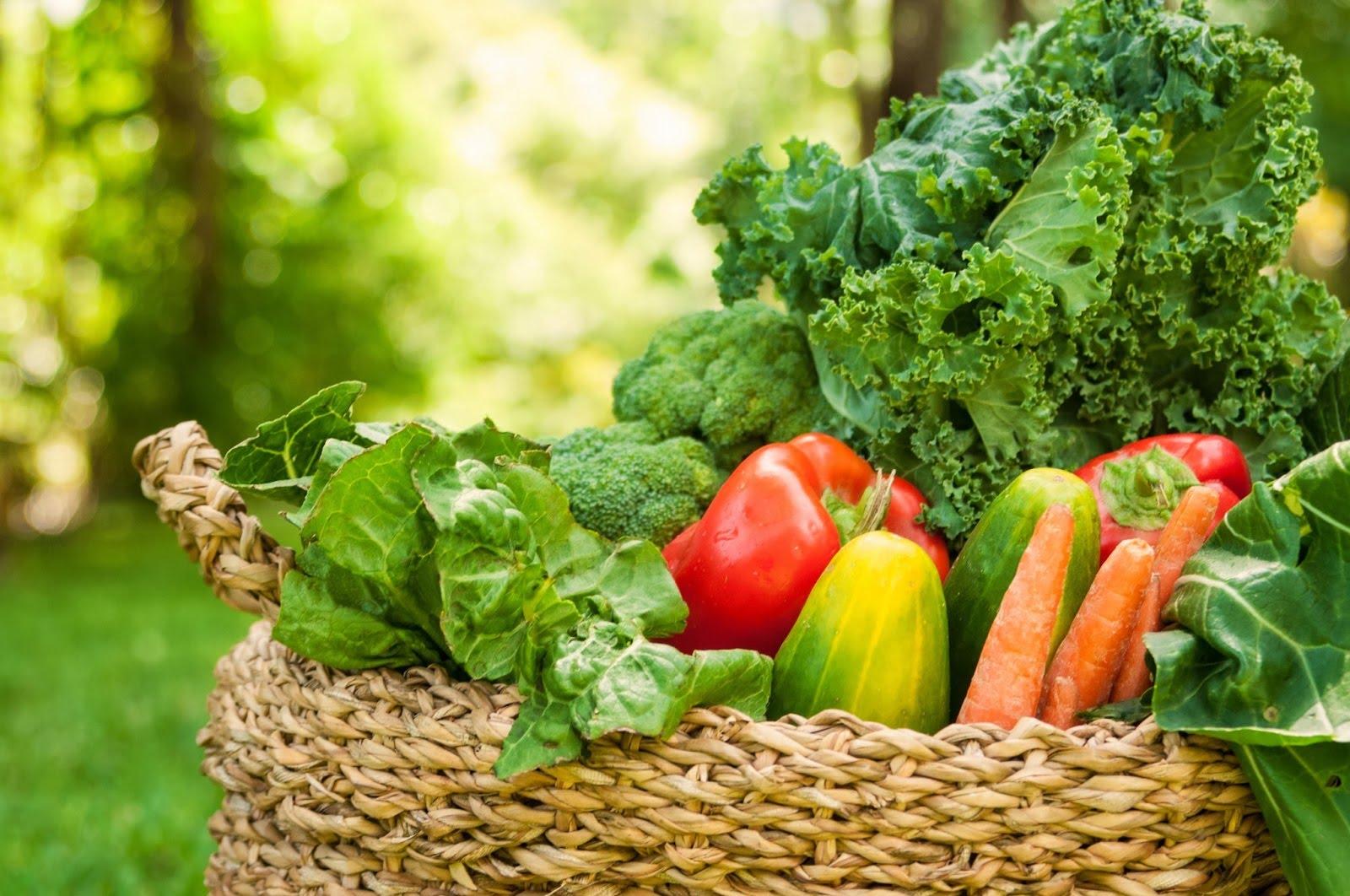 ¿Es beneficiosa la dieta alcalina?