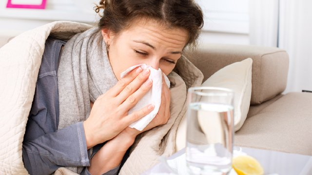 Los mejores remedios caseros contra los virus y las bacterias