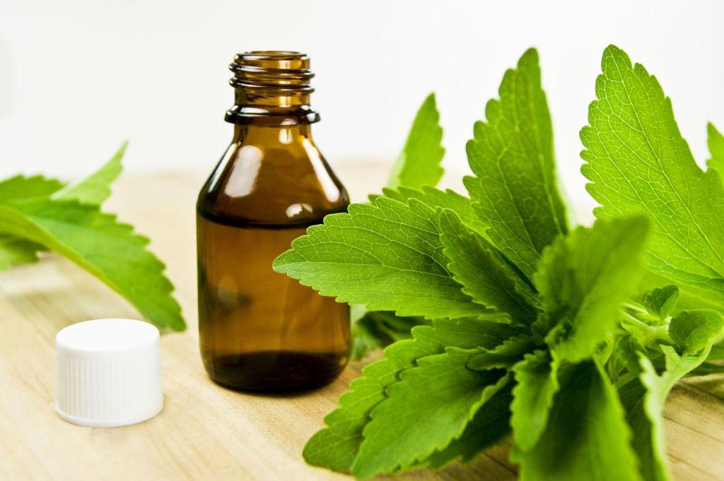 ¿Qué es la stevia y para qué sirve? | Cortaporlosano