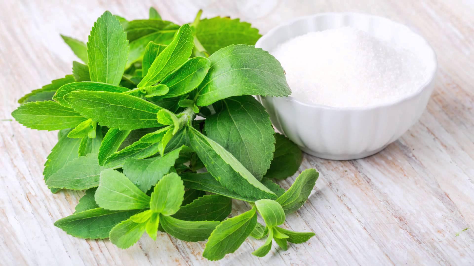 ¿Cuál es el origen de la stevia?
