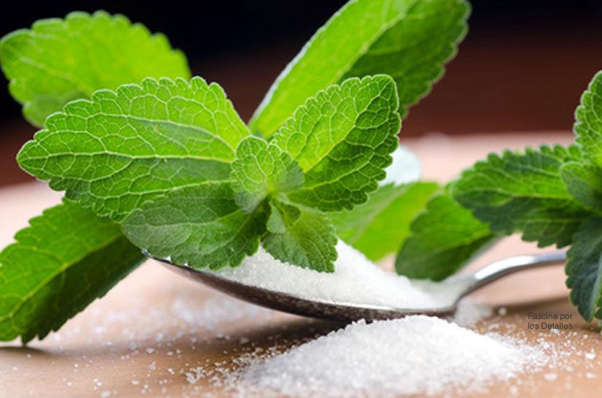 ¿La stevia es buena o mala?