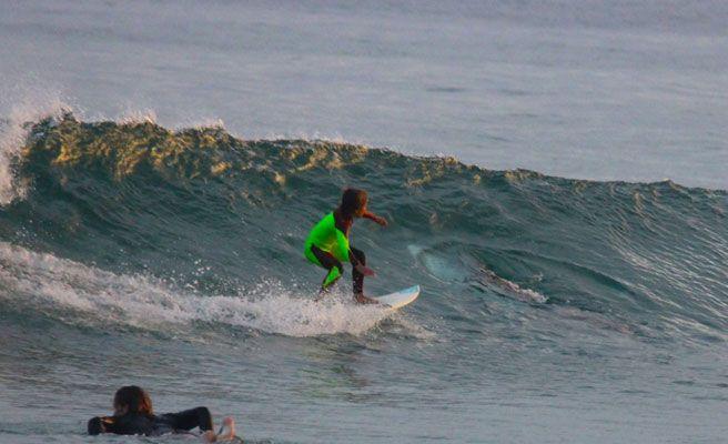 Un niño de 10 años surfea sobre un tiburón blanco