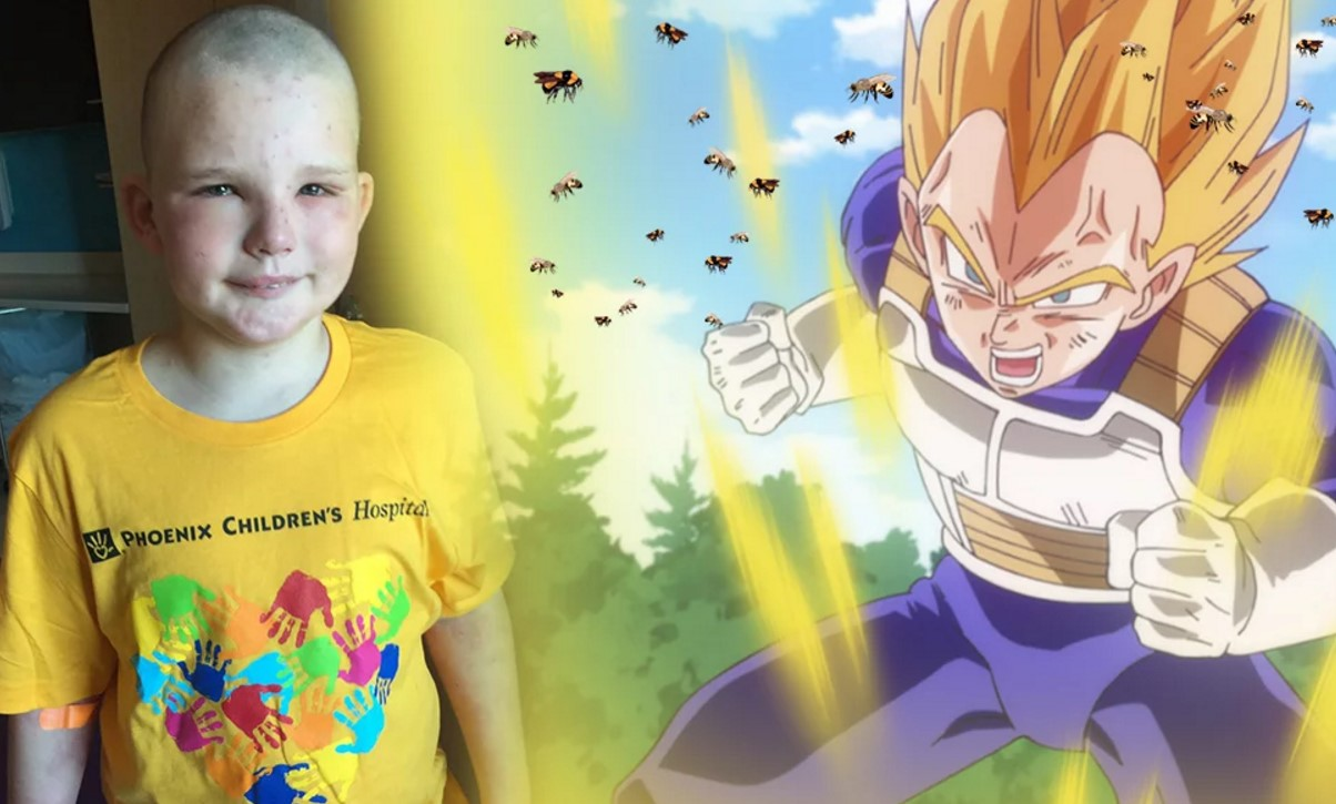 Sobrevive a 400 picaduras de abejas asesinas gracias a Dragon Ball