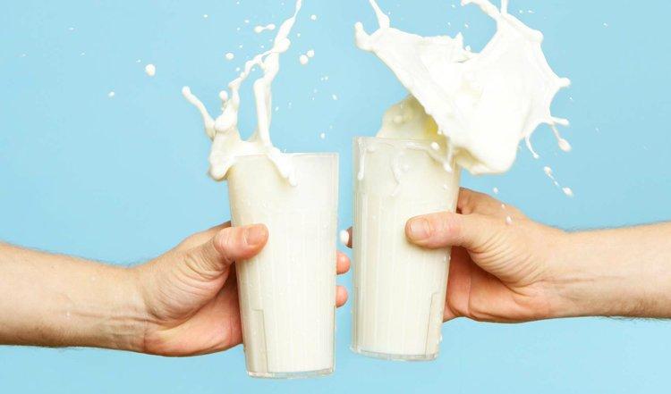dieta sin leche