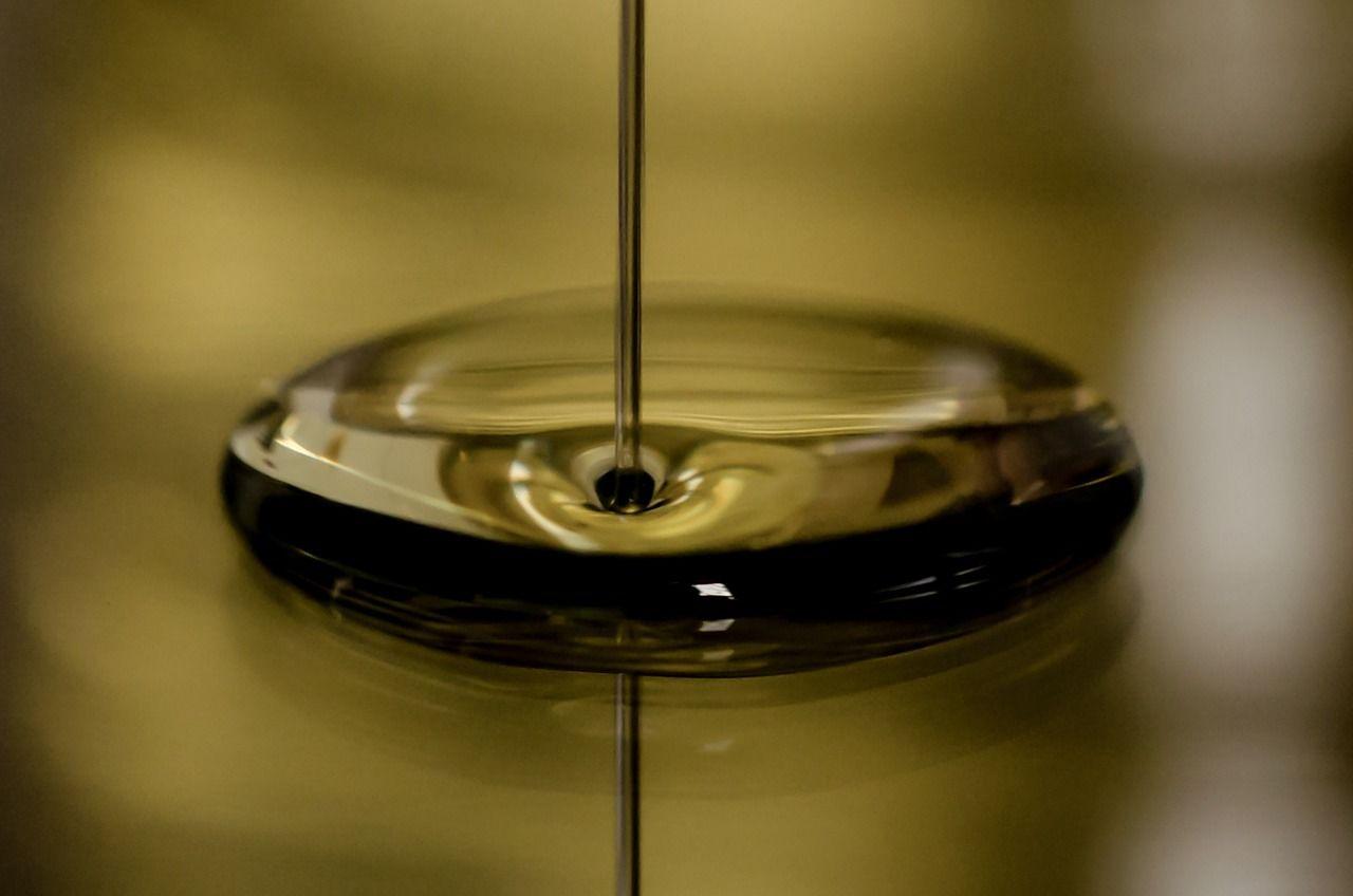 hacer aceite de aguacate