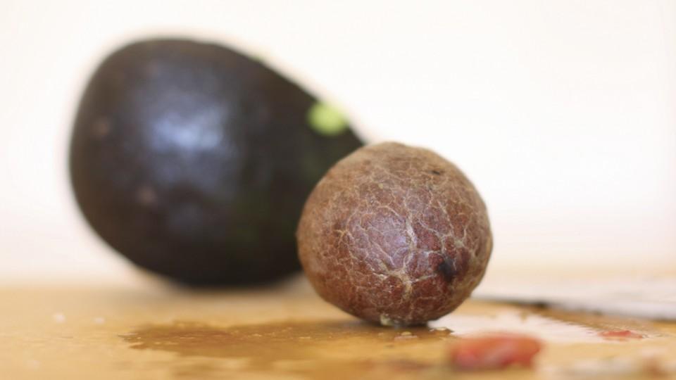 aguacate para adelgazar semilla