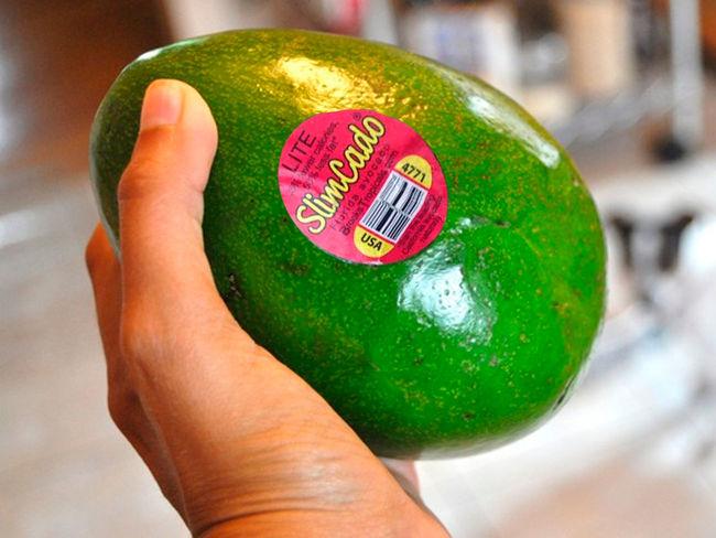 SlimCado, el aguacate light mexicano que todo el mundo odia