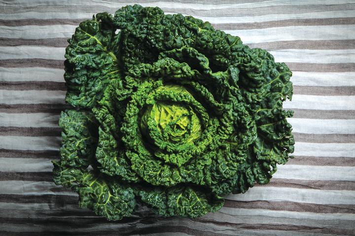 donde comprar kale
