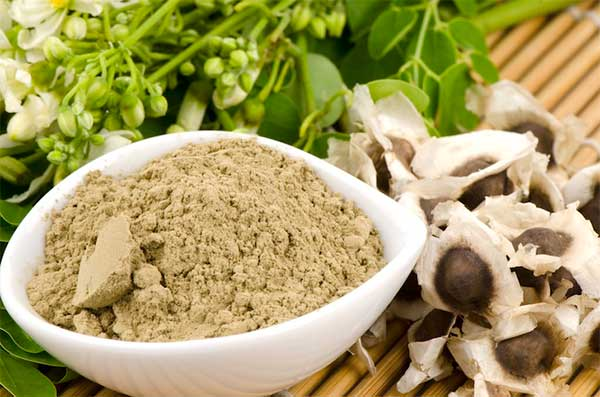 ¿Cuántas son las calorías de las semillas de moringa?