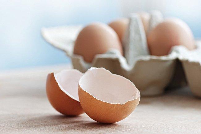 ¿Conoces los beneficios de la cáscara de huevo?